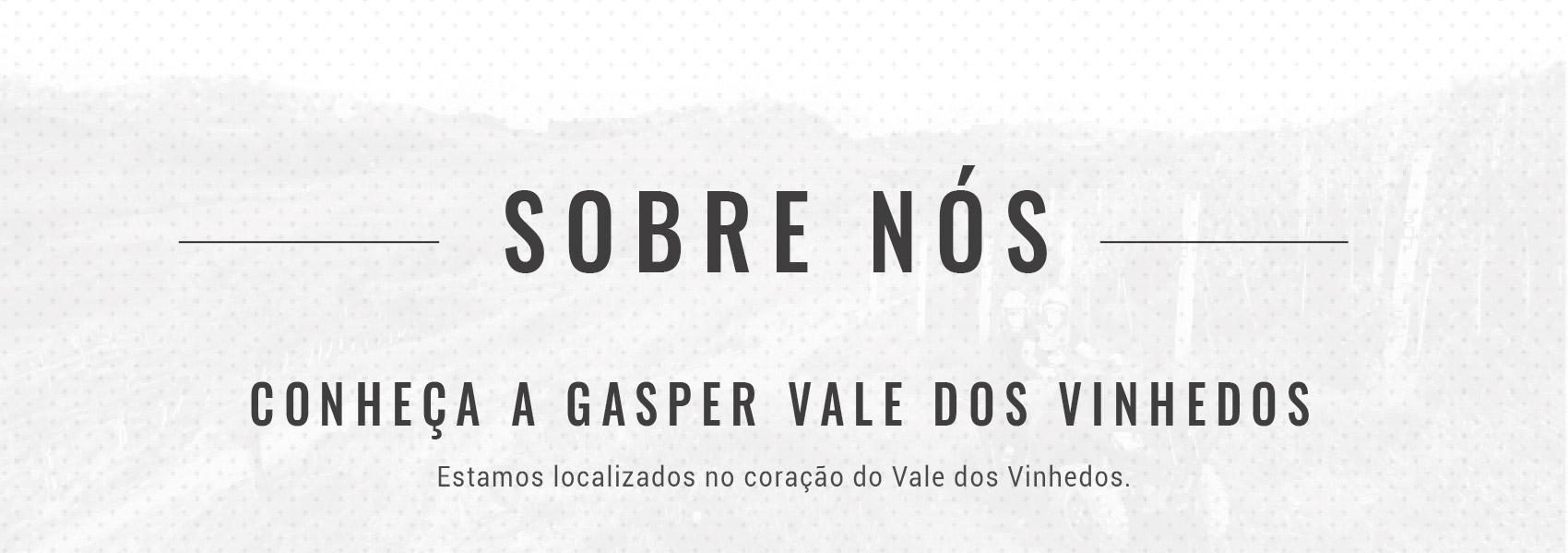 a-gasper-vale-dos-vinhedos-bg-2